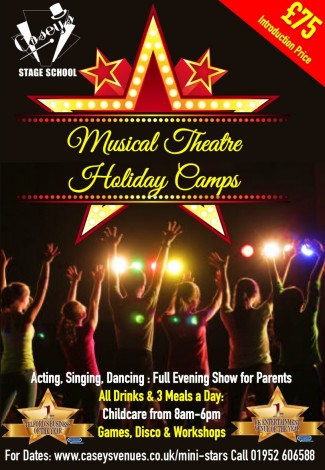 Theater camps advert 2018